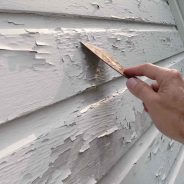 Painting Tips: Why Is My Wall Paint Blistering And Bubbling?